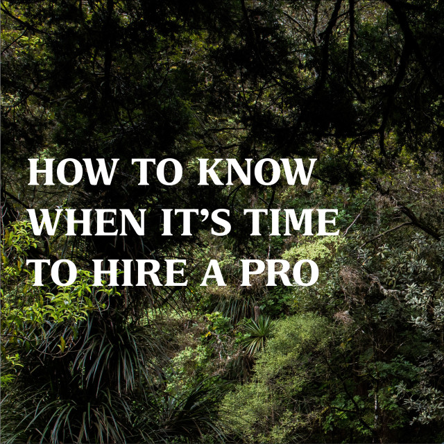 How to Know When it's Time to Hire a Pro