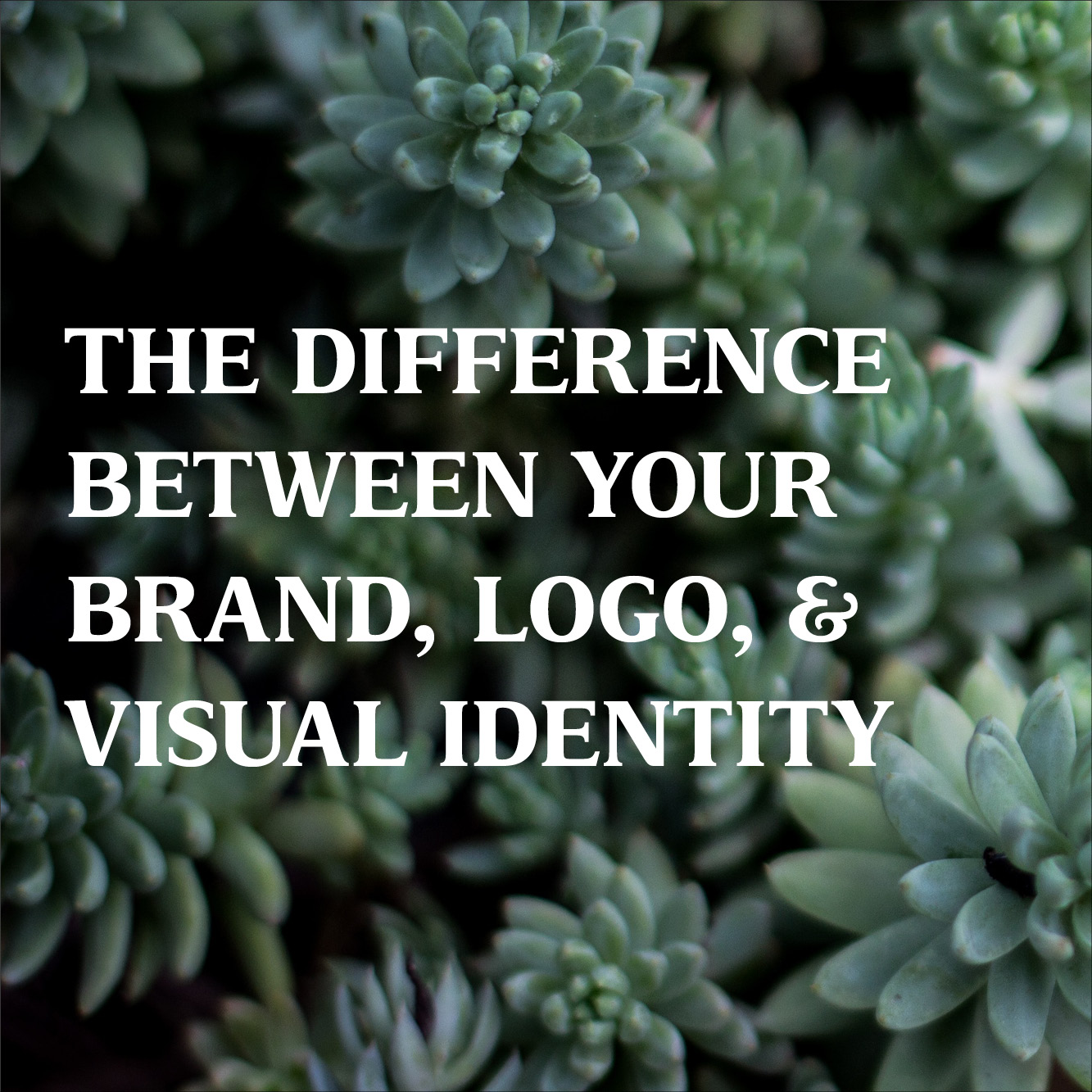 The Difference Between Your Brand, Logo, and Visual Identity
