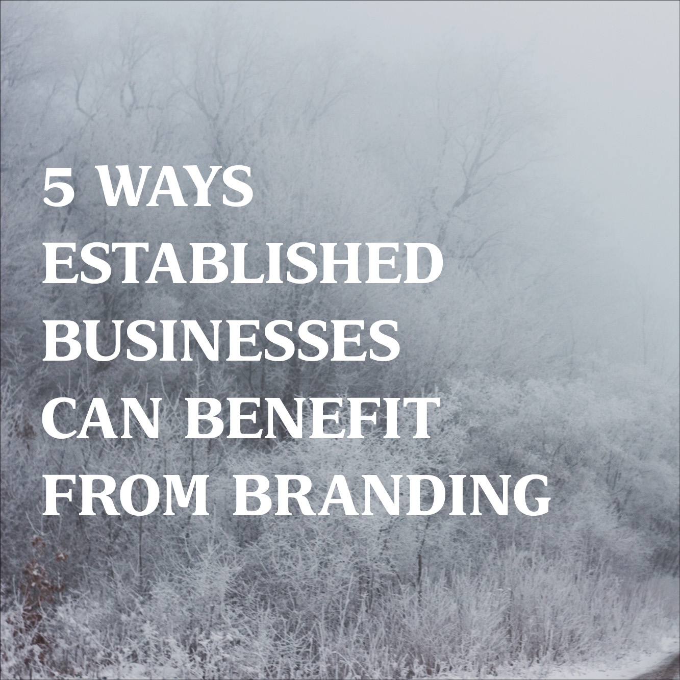 5 Ways Established Businesses Can Benefit from Branding