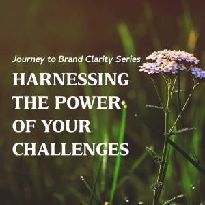 Harnessing the Power of your Challenges