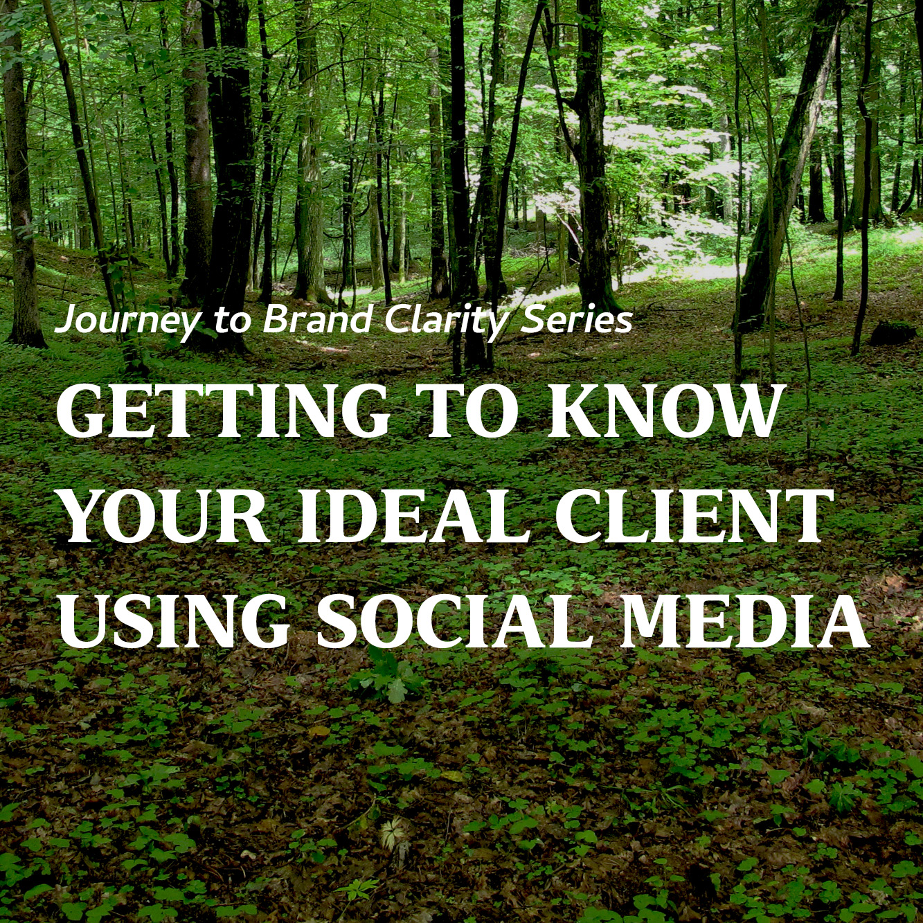 Getting to Know your Ideal Client Using Social Media