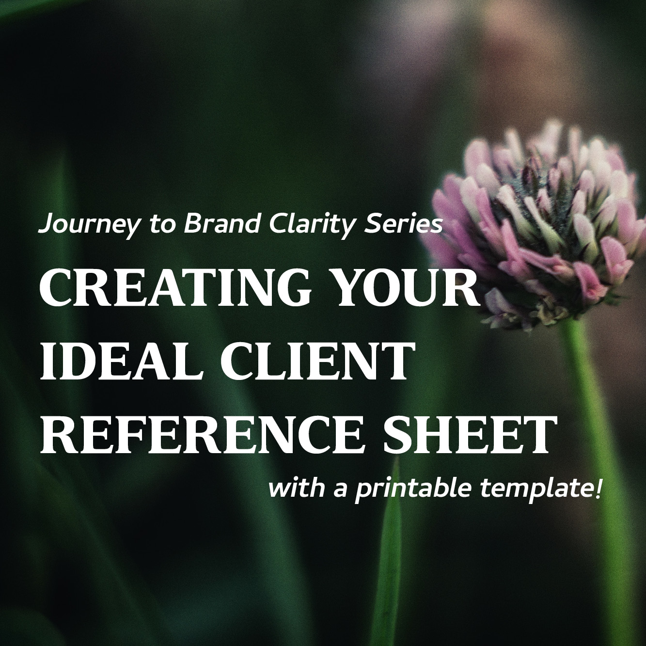 Creating Your Ideal Client Reference Sheet
