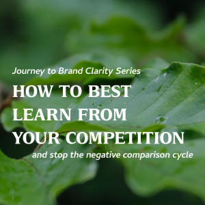 How to Best Learn from Your Competition
