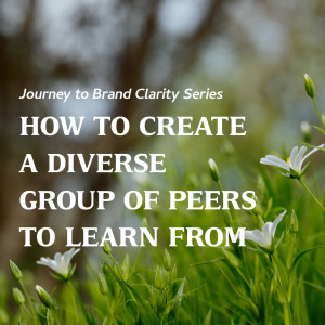 How to Create a Diverse Group of Peers to Learn From
