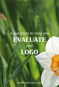4 Questions to Help you Evaluate your Logo