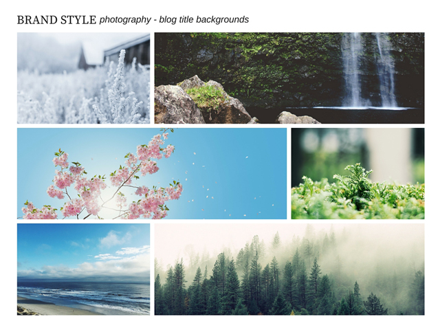 Brand Style Guide Photography Style Board