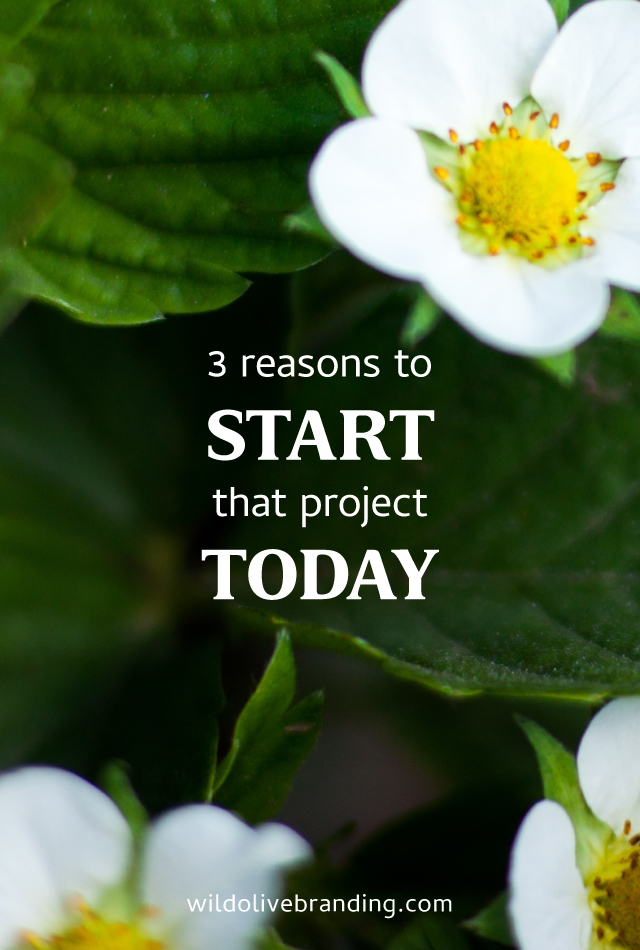 3 Reasons to Start that Project Today