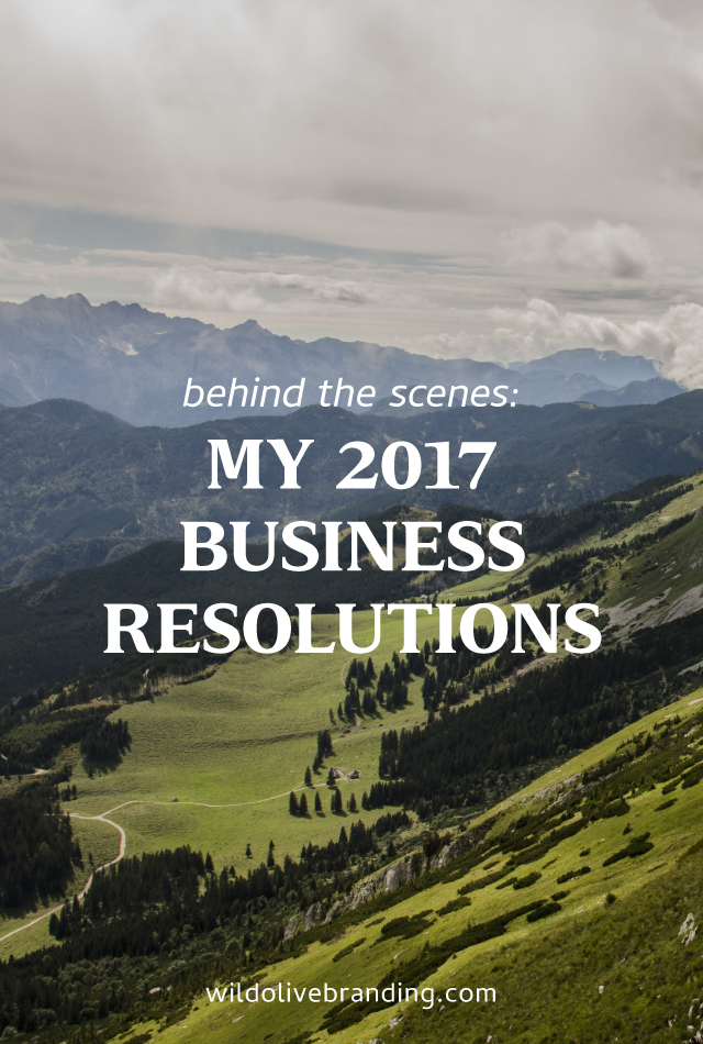 My 2017 Business Resolutions