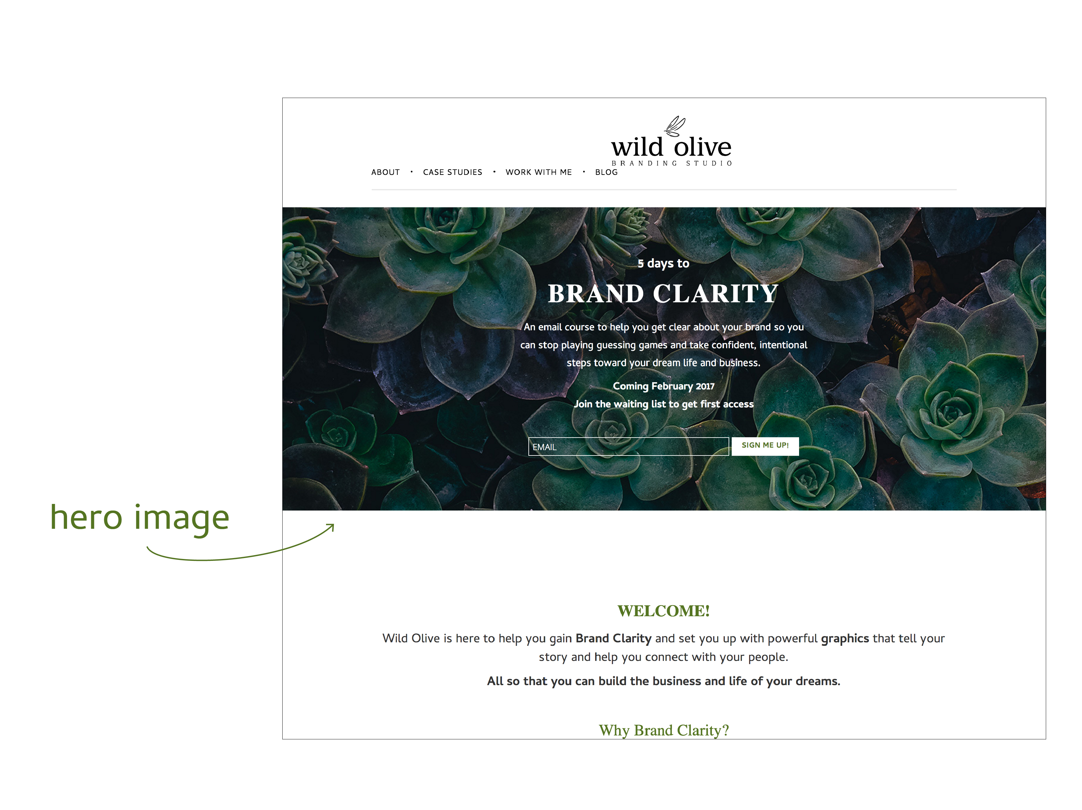 Website Hero Image Design - Example