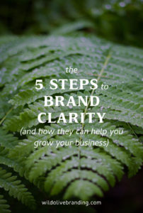 The 5 Steps to Brand Clarity