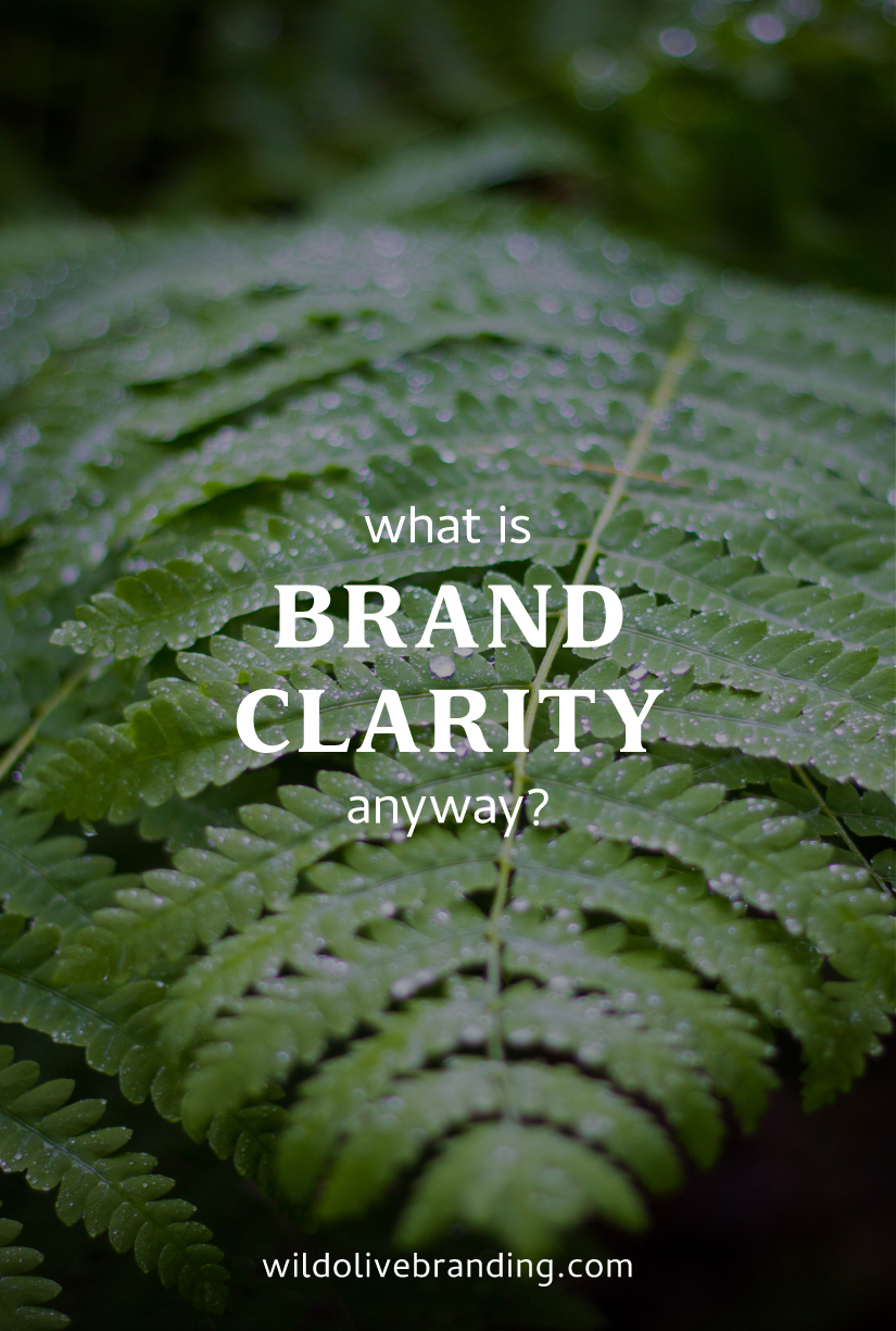 What is Brand Clarity, anyway?