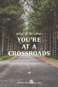 What to do when you're at a crossroads