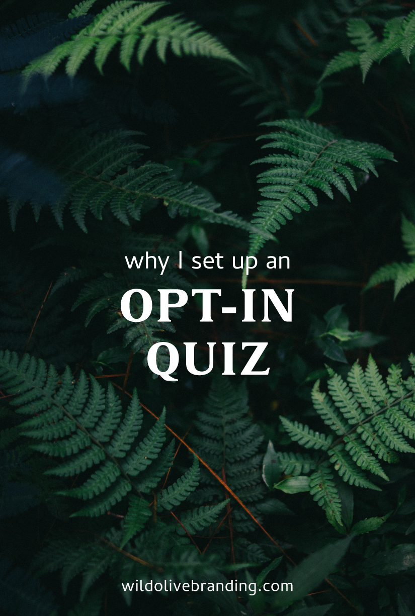 Why I Set Up an Opt-In Quiz