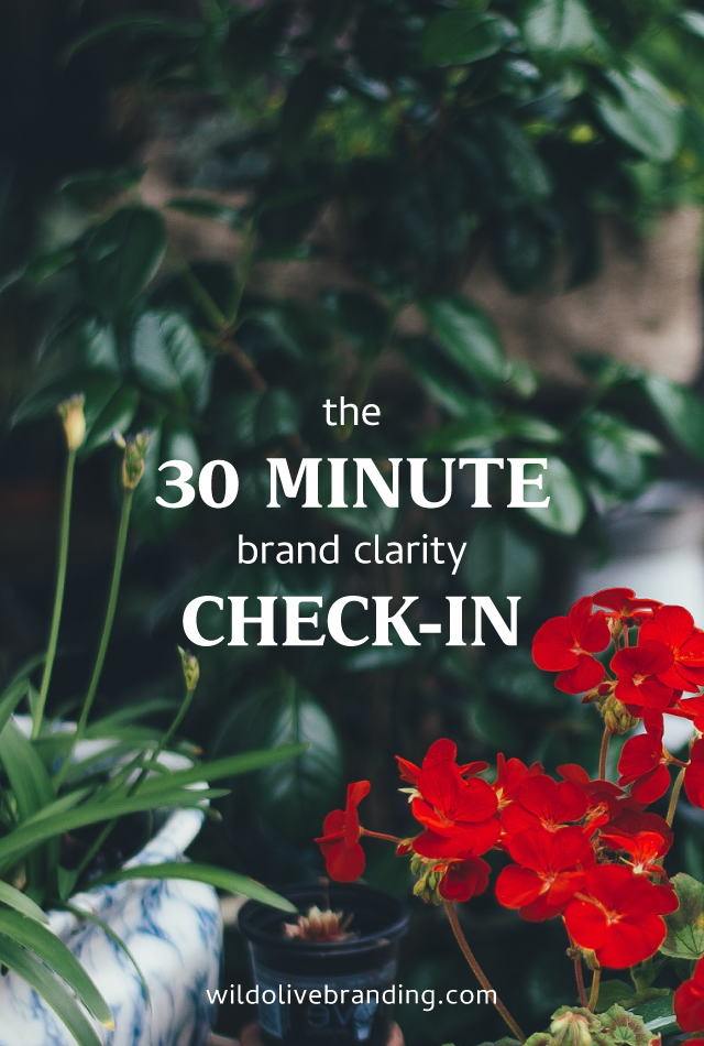 30 Minute Brand Clarity Check-In