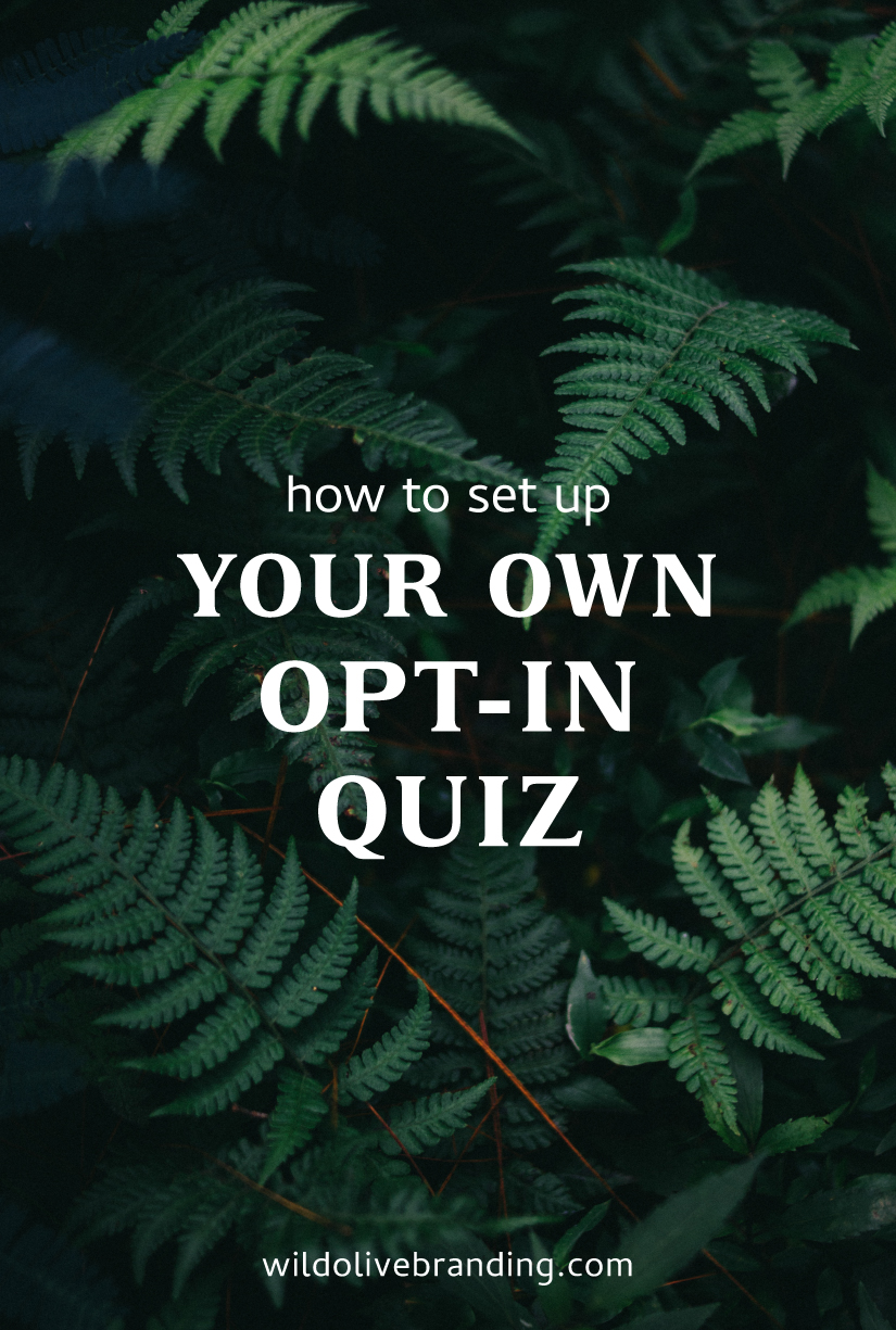 How to Set Up Your Own Opt-In Quiz